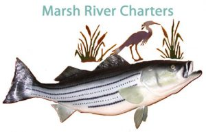 Marsh River Charters